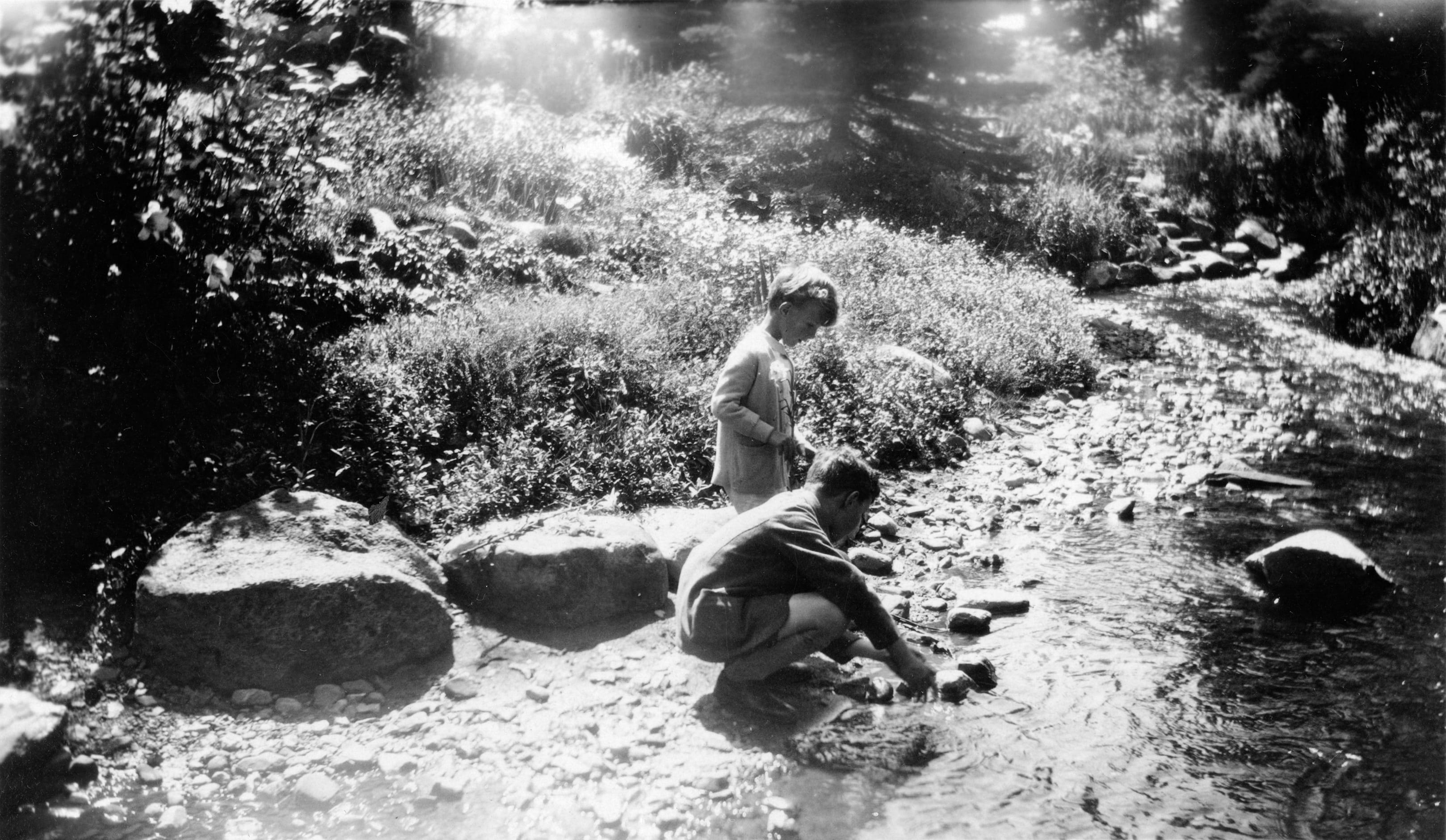 Deux enfants jouent dans un ruisseau, qui serpente dans une forêt luxuriante.