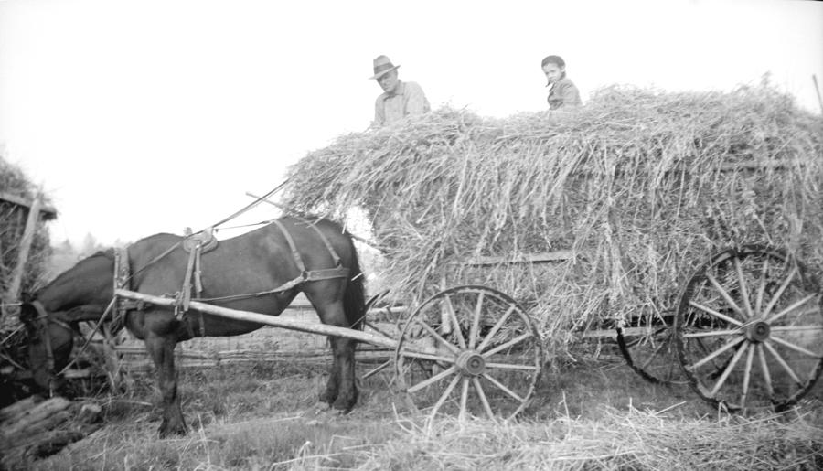 Un homme et un petit garçon sont assis sur une voiture remplie de foin, tirée par un cheval.