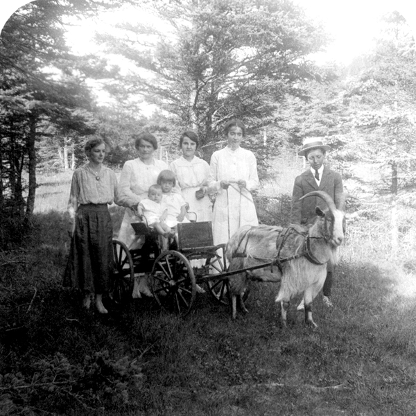 A family portrait with two children sitting in a small cart drawn by a goat!