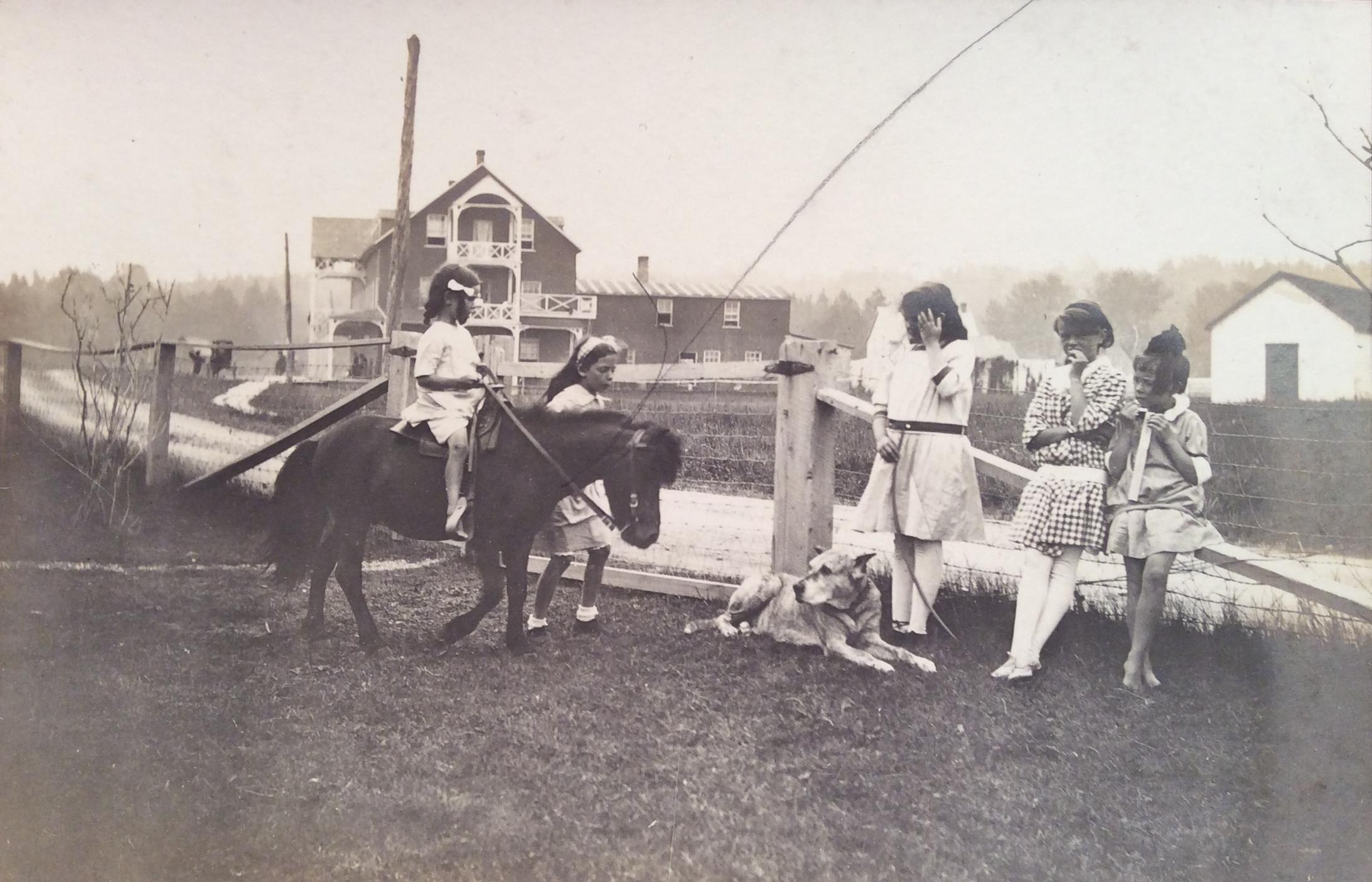 Une fille d'une dizaine d'années anime une balade en poney. D'autres jeunes filles attendent leur tour.