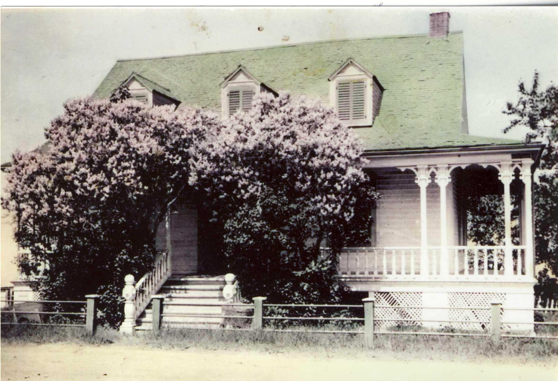 Photographie noir et blanc avec des retouches de couleur, présentant une maison ancienne partiellement cachée par des lilas.