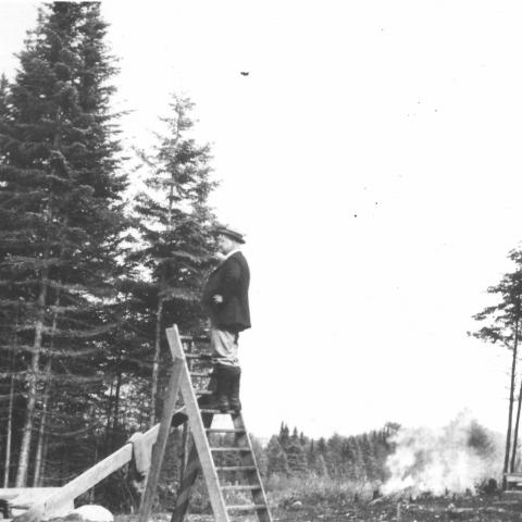 A man climbing a stepladder in the middle of a cleared lot, with branches burning in the background.
