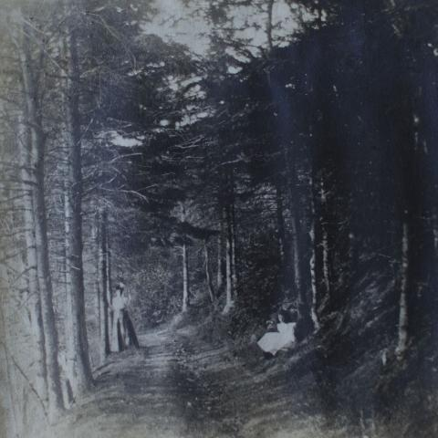 An old photo showing a young woman and a girl on a trail deep in a forest.