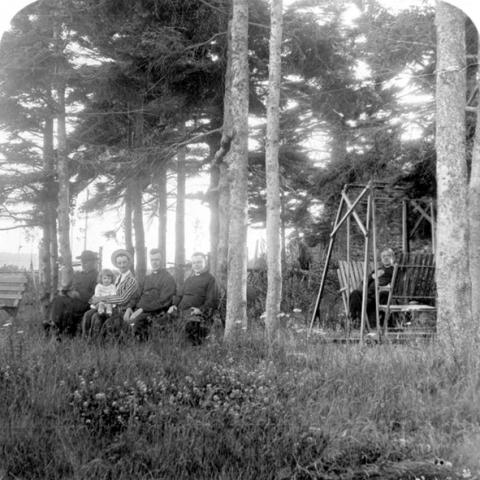 People sitting in a wooded rest area.