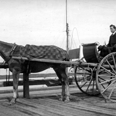 Un jeune homme se balade dans une voiture tirée par un cheval.