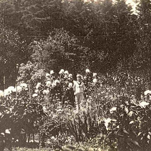 A child wearing a sailor suit in an English-style flower garden.