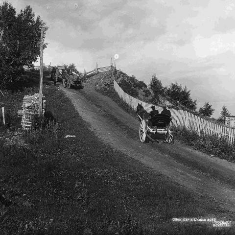 Three horse-drawn carriages climb a hill on a country road bordered to the right by a fence.
